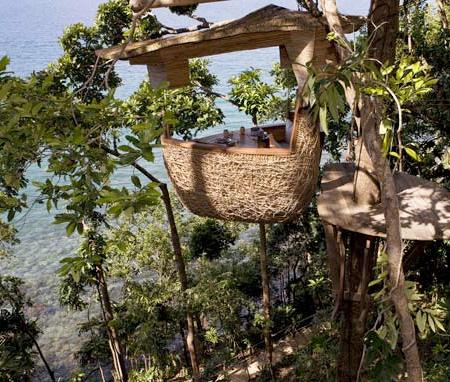 Bentuk Restoran Unik Sarang Burung