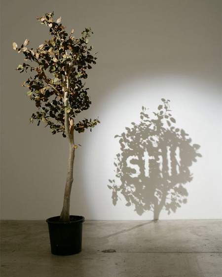 Shadow Art by Fred Eerdekens