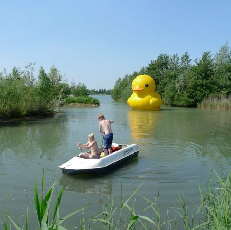 Giant Rubber Duck by Florentijn Hofman