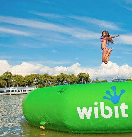 Wibit
