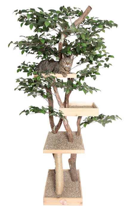 Tree House for Cats