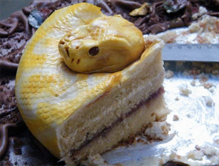 Realistic Snake Cake by Francesca Pitcher