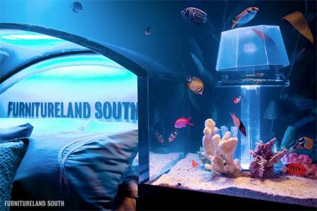 Aquarium Bed Frame