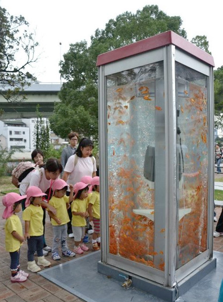 Telephone Booth Aquariums
