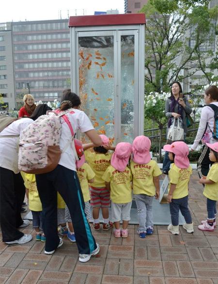 Phone Booth Aquarium in Japan