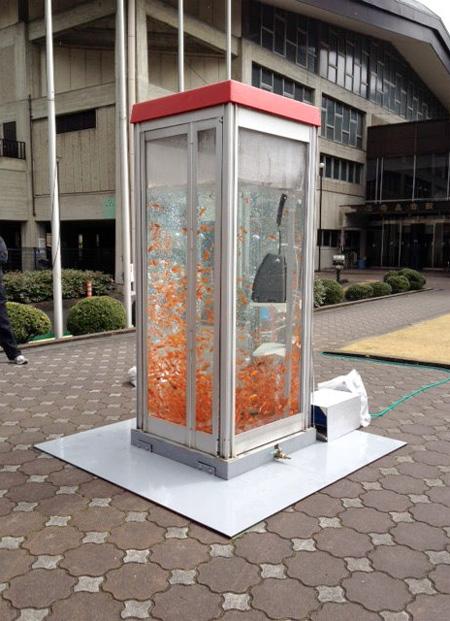 Kingyobu Telephone Booth Aquarium