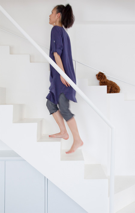 Staircase for People and Dogs
