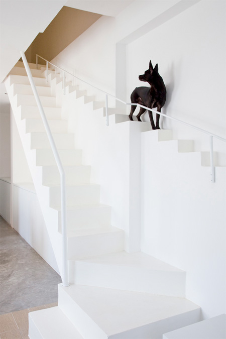 Staircase for Pets