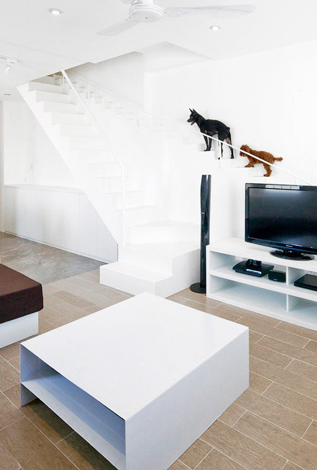 Stairs for Pets