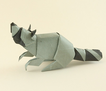 Origami Raccoon
