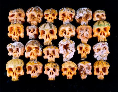 Food Skulls