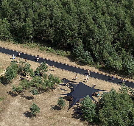 Trampoline Road in the Forest
