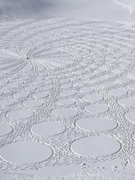 Pattern on Snow
