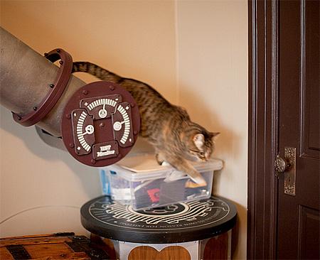 سیستم پیشرفته برای گربه ها