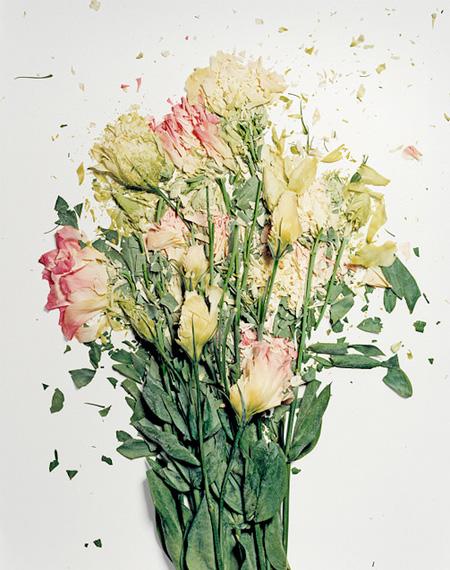 Exploded Flower