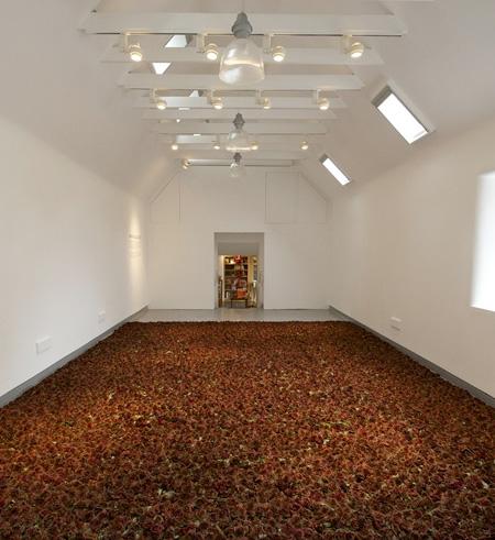 Carpet Made of Roses