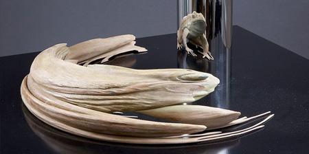Anamorphic Sculptures