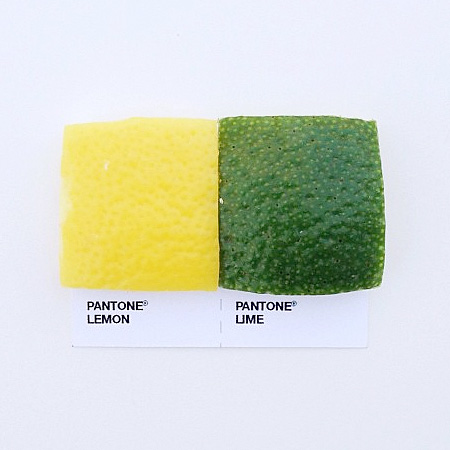 Pantone Pairings by David Schwen