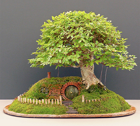 Lord of the Rings Bonsai Tree