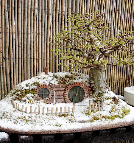 Hobbit Bonsai Trayscape