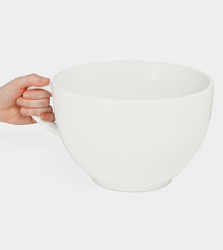 Worlds Largest Mug