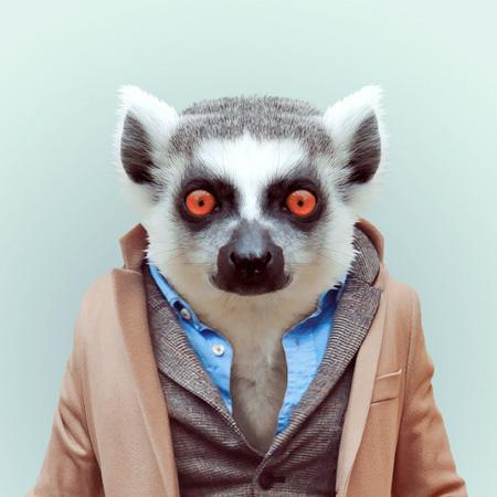Animals Dressed Like Humans