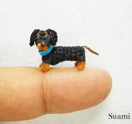 Miniature Dog