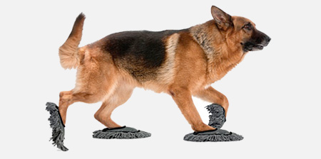 Cleaning Slippers for Cats and Dogs
