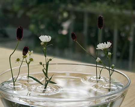 Floating Ripple Vases