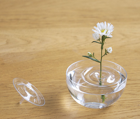 Invisible Vase