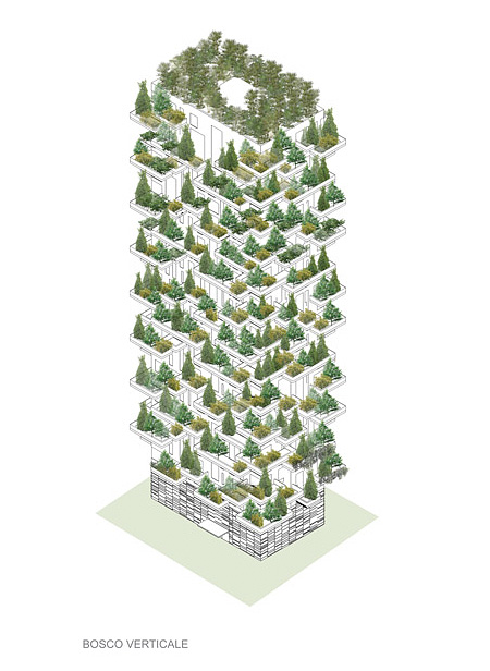 Forest Tower