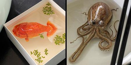 3D Paintings by Keng Lye
