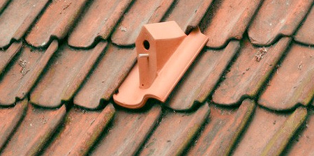 Birdhouse for your Roof