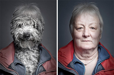 Dogs Dressed Like Their Owners