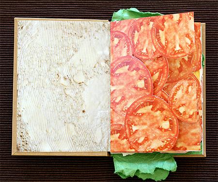 Cheeseburger Book