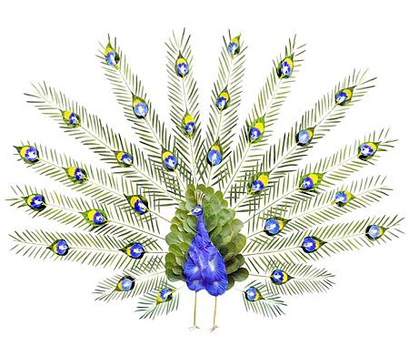 Bird Made of Petals