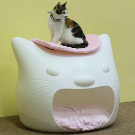 KittyMeow