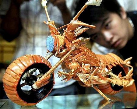 Lobster Bike