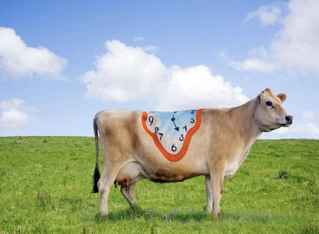 Painted Cows