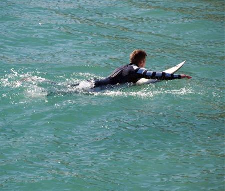Shark Wetsuit
