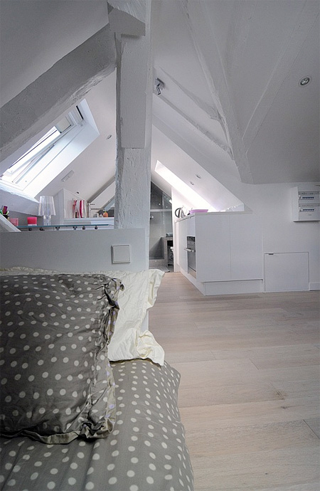 Attic Apartment in Paris