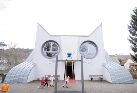 Cat Building