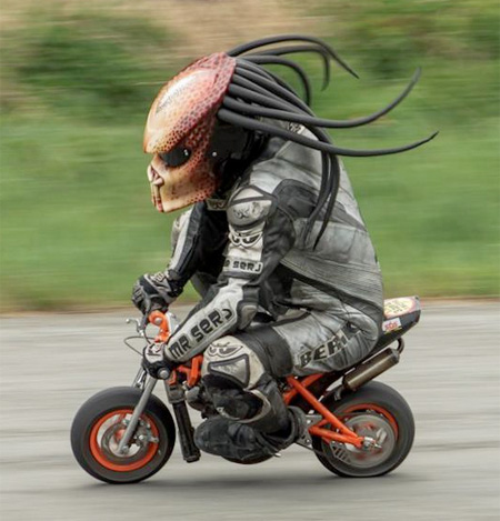 Predator Bicycle Helmet