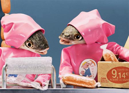 Fish Head Dioramas