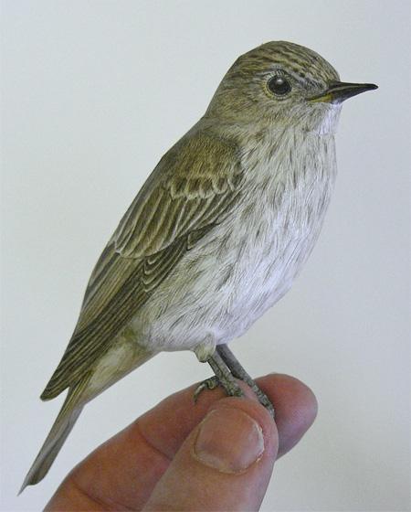 Realistic Paper Bird