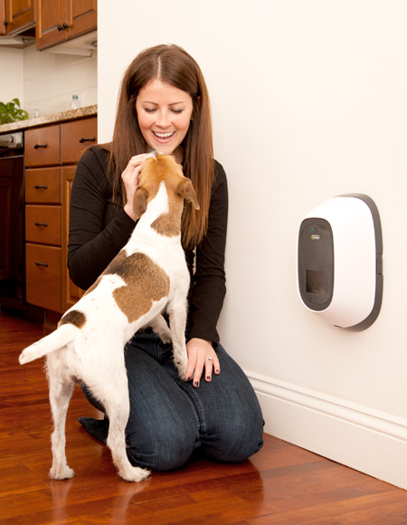 Video Phone for Dogs