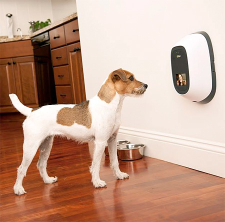 Video Phone for Pets