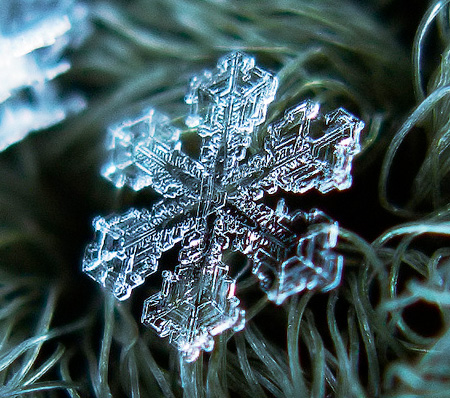 Photos of Snowflakes
