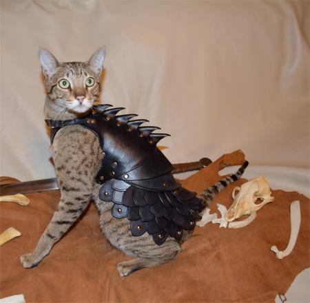 Cat Leather Armor