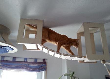 3D Cat Furniture